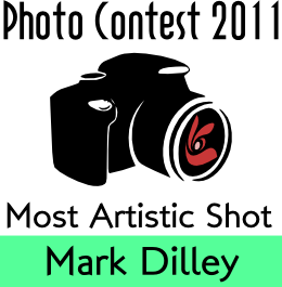PhotoContest2011 Most Artistic Shot - MarkD.png