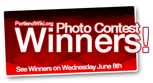Graphic-photowinners-banner.png